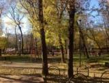 Милютинский сад – порятунок від міської суєти прямо в центрі мегаполісу