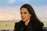 Напиваться и бить детей: Джоли сделал громкое признание о Pitt