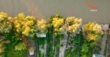 Украинский остров на Дунае: почему стоит посетить Анкудинов
